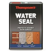 THOWATERSEAL - Thompsons Water Seal 5L